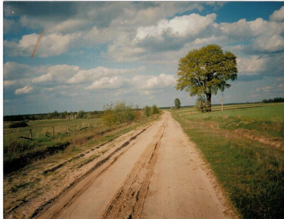 Szlak Litewski tędy podróżowała królowa Bona na Litwę