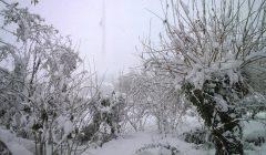 Macerata-snieg-12-Polacy-we-Wloszech