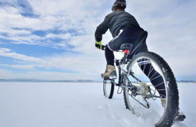 新雪の広大な雪原を走る
