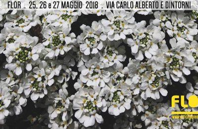 Flor Primavera, Turyn