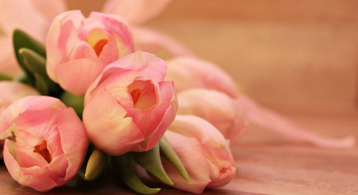 Jakie Kwiaty Dla Mamy W Dzień Matki Polacy We Włoszech